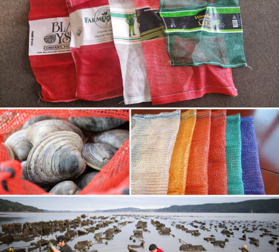 Mesh Bags and Onion Bags